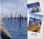 Peacock-au-Surinam-page-004-150x132