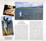 Peacock-au-Surinam-page-011-150x134