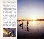 Peacock-au-Surinam-page-014-150x134