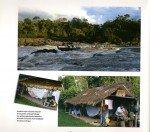 Peacock-au-Surinam-page-015-150x132