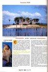 Peacock-au-Surinam-page-021-99x150