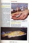 Peacock-au-Surinam-page-022-101x150