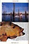 Peacock-au-Surinam-page-023-101x150