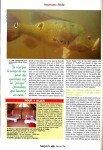 Peacock-au-Surinam-page-025-103x150
