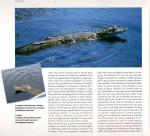 Vénézuéla-page-03-150x136