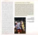 Vénézuéla-page-06-150x137