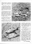 Sirius-N°-7-mai-2012-page-4-jpg-108x150