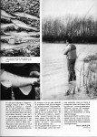 articla-11-2012-le-sandre-au-poisson-mort-suite-3-page-4-107x150
