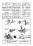 articla-12-2012-le-sandre-au-poisson-mort-suite-4-page-4-108x150