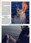art-08-2013-prenez-les-a-la-main-page-4-109x150