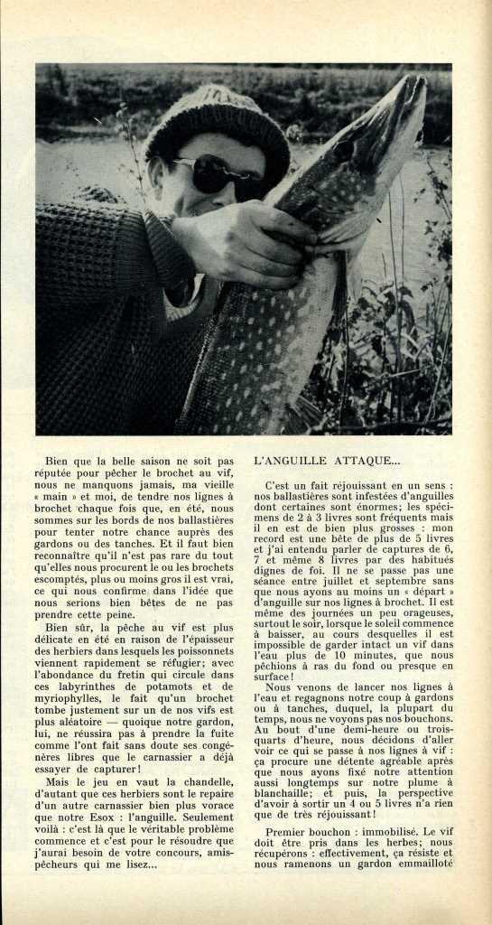 Foyer Art Vif Bienne : Anguille et brochet au vif article paru dans « la peche
