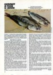 art 05-2014 de M DUBORGEL Comment je pêche le sandre page 5