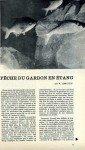 art 05-2014 Pêche du gardon en étang page 1
