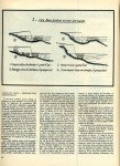 art 05-2014 Pêche du gardon en étang page 2