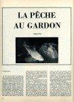 art 06-2014 Pêche du gardon en étang 2 page 1