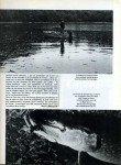 art 10-2014 Lancer estival en lac de barrage 3 page 5
