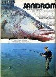 art 05-2015 Sandromachie page 1