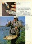 art 06-2015 Les acides aminés page 4