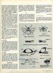 art 08-2015 La pêche à la fourmi volante page 3