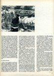art 03-2016 Le gardon est rare._. 2 page 2