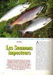 art 10-2016 Les saumons imposteurs page 1