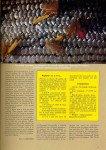 art 12-2016 Les ombres de la St Sylvestre page 4