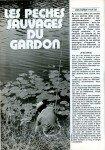 art 12-2017 Les pêches sauvages du gardon 2 page 1