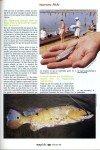 art 10-2018 Le poisson paon page 4