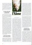 art 06-2019 L'alose à la mouche page 3