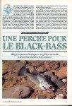 08-2019 Une perche pour le black bass page 1